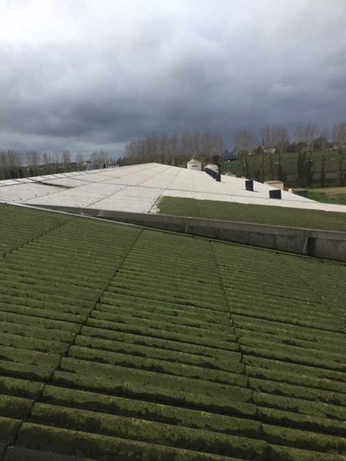 demoussage murs et toitures batiments agricoles