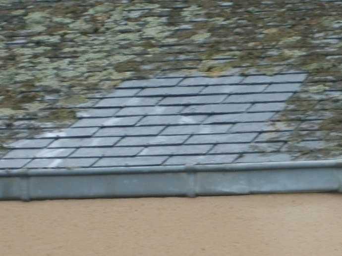 demoussage toitures batiments